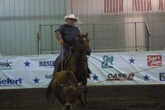 Krajowy Equestrian centrum 2016 fotografia stock