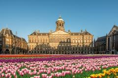Krajowy tulipanowy dzień przy Grobelnym kwadratem z Royal Palace Zdjęcia Stock