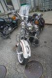 Krajowy wieprza wiec Halden, Norwegia 12, 15 Czerwiec 2014 (rowery) Obraz Royalty Free