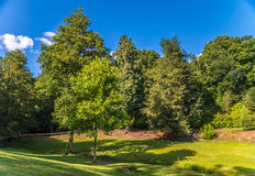 Krajowy zaufania Ightham Mote - średniowieczny domu nd park Zdjęcia Royalty Free