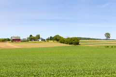 kraju amerykański gospodarstwo rolne Obraz Royalty Free