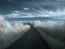 kraju infrared droga Fotografia Stock