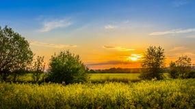 Kraju krajobraz Zdjęcie Royalty Free