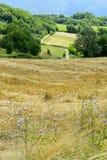 Kraju krajobraz w Lazio (Włochy) Zdjęcia Royalty Free