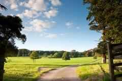 kraju krajobrazowy grabienia światło słoneczne Obraz Royalty Free