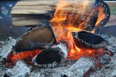 Kraju obozu ogień Obraz Royalty Free