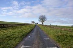 Kraju pas ruchu drogowy prowadzić w horyzont z drzewem zdjęcie stock
