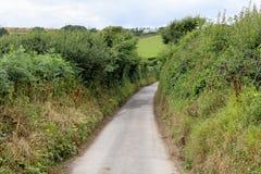 Kraju pas ruchu w Cornwall w lecie Fotografia Royalty Free
