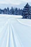 kraju przecinający narciarstwa ślad Obrazy Royalty Free