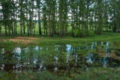 Kraju whith krajobrazowy odbicie w rzece, Bogolubovo, Rus Zdjęcie Stock