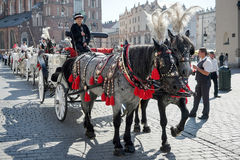 KRAKÓW, POLAND/EUROPE - 19 DE SEPTIEMBRE: Carro y caballos en el Kr Imágenes de archivo libres de regalías