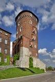 Kraków - Wawel Fotos de archivo libres de regalías