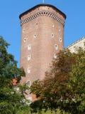 KRAKAU, Polen-königliches Schloss in Krakau Wawel lizenzfreie stockfotos