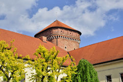 Krakau - Wawel Stock Afbeelding