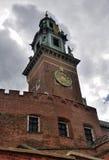 Krakau - Wawel Stockfotografie