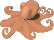 Kraken-im Ruhezustand Illustration stock abbildung