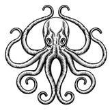 Kraken-oder Kalmar-Illustration Stockfotografie