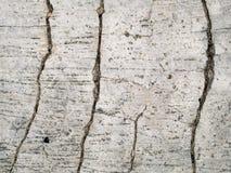 Krakingowa betonowa tekstura Obraz Royalty Free