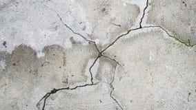 Krakingowa cementowa podłoga z zielonym mech zdjęcie stock