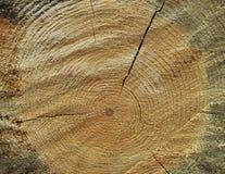 Krakingowa drewniana fiszorek tekstury fotografia Fotografia Stock