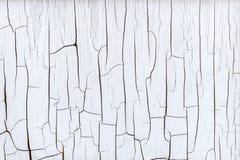 Krakingowa farba na płaskiej powierzchni Obraz Royalty Free