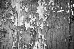 Krakingowa farba na stary drewniany ścienny czarny i biały Zdjęcie Royalty Free