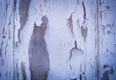 Krakingowa malująca biel ściana Obraz Stock