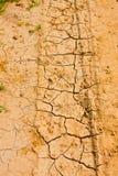 Krakingowa pustynna ziemia z traw flancami Fotografia Stock