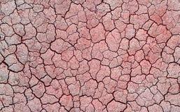 krakingowa sucha ziemia Obrazy Stock