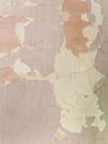 Krakingowa tekstura farba Stara farba na drewnianym nawierzchniowym zakończeniu Widok wierzchołek, Makro- fotografia barwił tekst Zdjęcie Stock
