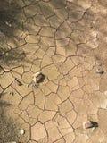 krakingowa ziemi Fotografia Royalty Free