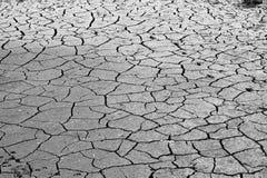 Krakingowa ziemia, glebowy zasolenie, ekologiczna katastrofa Fotografia Stock