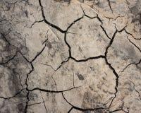 Krakingowa ziemia przy wiosną Tło i tekstura Zdjęcie Stock