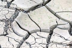 Krakingowy błoto ziemi suszy tło Makro- Obraz Stock