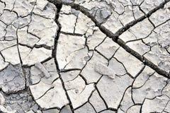 Krakingowy błoto ziemi suszy tło Makro- Obrazy Royalty Free