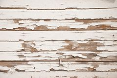 krakingowy stary farby ściany biel drewno fotografia royalty free