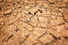 Krakingowy suchy ląd bez wody Fotografia Royalty Free