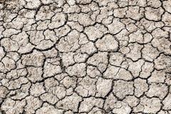 Krakingowy suchy ląd bez wody Zdjęcia Royalty Free