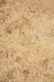 krakingowy suszy ziemię Obraz Royalty Free