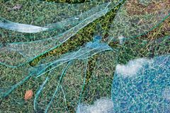 Krakingowy szklany lying on the beach na trawie, łamający szkło przez go ty może widzieć trawy fotografia stock