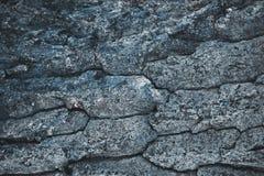 krakingowy szorstki szary drzewnej barkentyny tło obraz stock