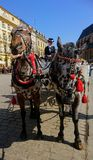 krakow royaltyfri foto