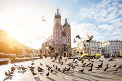 Krakow city in Poland. View on the central square and famous st. Marys basilica with pigeons flying during the sunrise in Krakow, Poland stock image