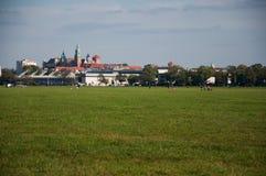Krakow Royalty Free Stock Image