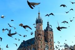 Krakow landmarks Royalty Free Stock Image