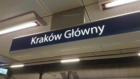 Krakow main railway station. Pointer stock video