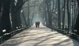 Krakow park – fog Royalty Free Stock Images
