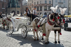 KRAKOW, POLAND/EUROPE - SEPTEMBER 19 : Carriage and horses in Kr Royalty Free Stock Photography