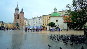The rainy Main Market Squre in Krakow stock video footage