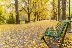Krakow,  Poland - October 25, 2015: Beautiful alley in autumnal  park. Stock Photo